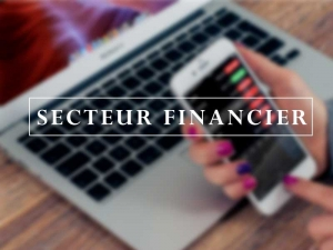 Secteur Financier
